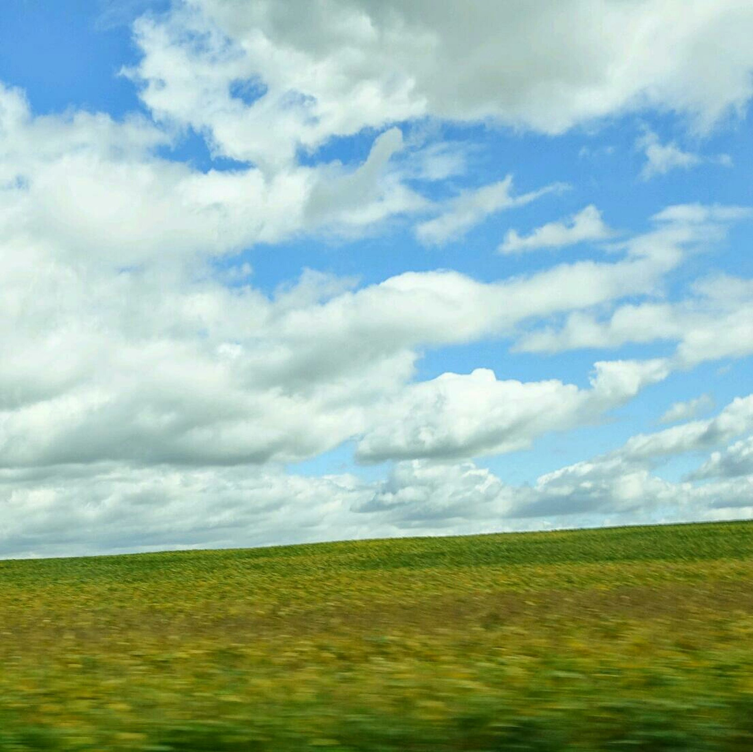 sky, tranquil scene, landscape, field, tranquility, cloud - sky, scenics, beauty in nature, cloudy, agriculture, cloud, rural scene, nature, horizon over land, grass, farm, growth, idyllic, cloudscape, crop