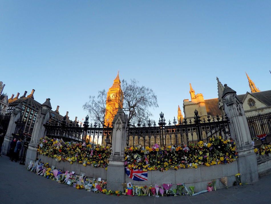 Remembering the fallen Big Ben City England Houses Of Parliament London London Lifestyle Westminster Westminster Bridge