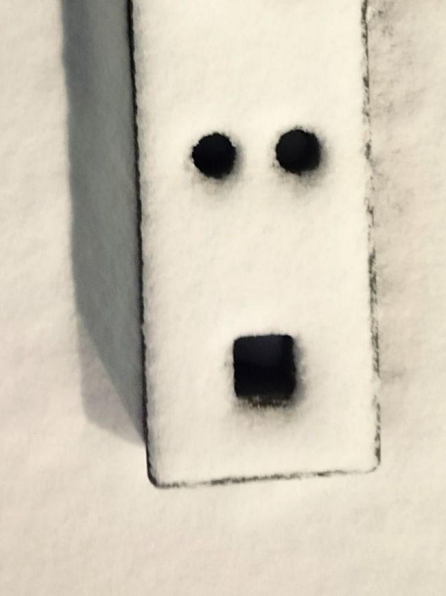 Oh, a Face in the Snow