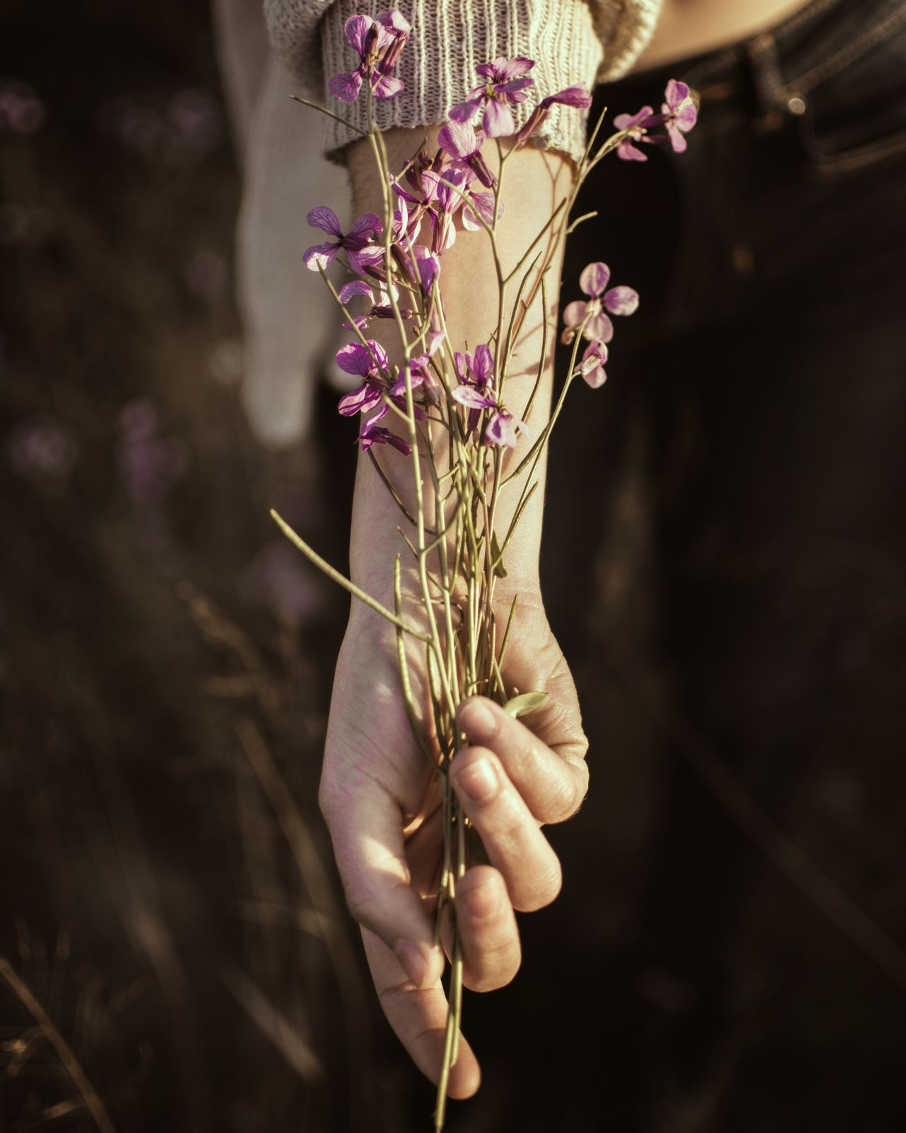 Own heroes EyeEm Selects flower human hand blossom human body part Plant Nature close-up Tree Growth fragility beauty branch Adult only women beauty in Nature people day one person outdoors flower head EyeEmNewHere