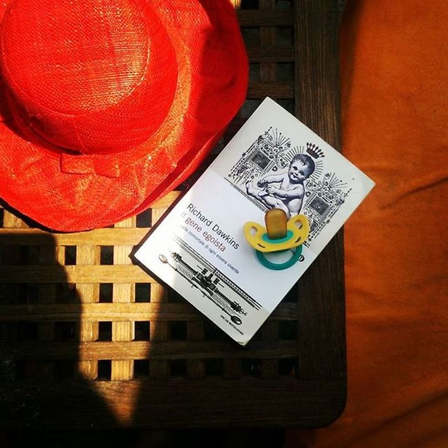 Hat Book and Pacifier Paraggi Beach Bagnifiore Richarddawkins Summer Instamood Photooftheday