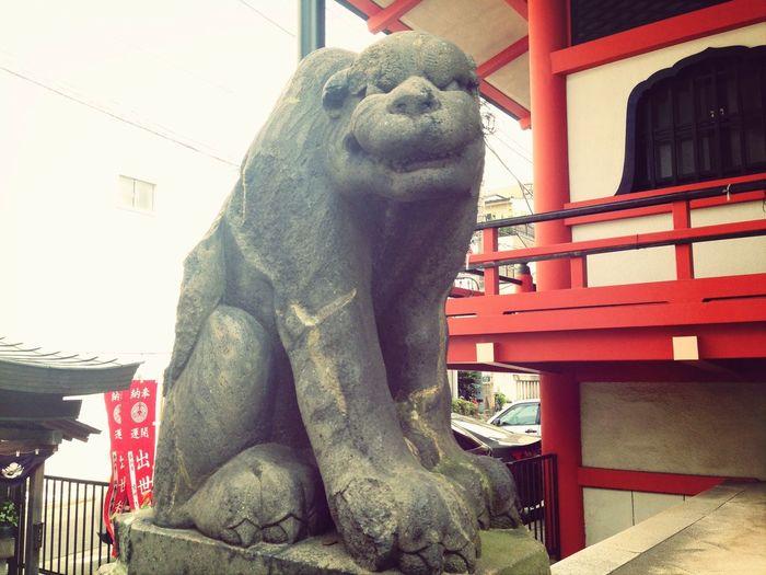 狛犬。 Temple