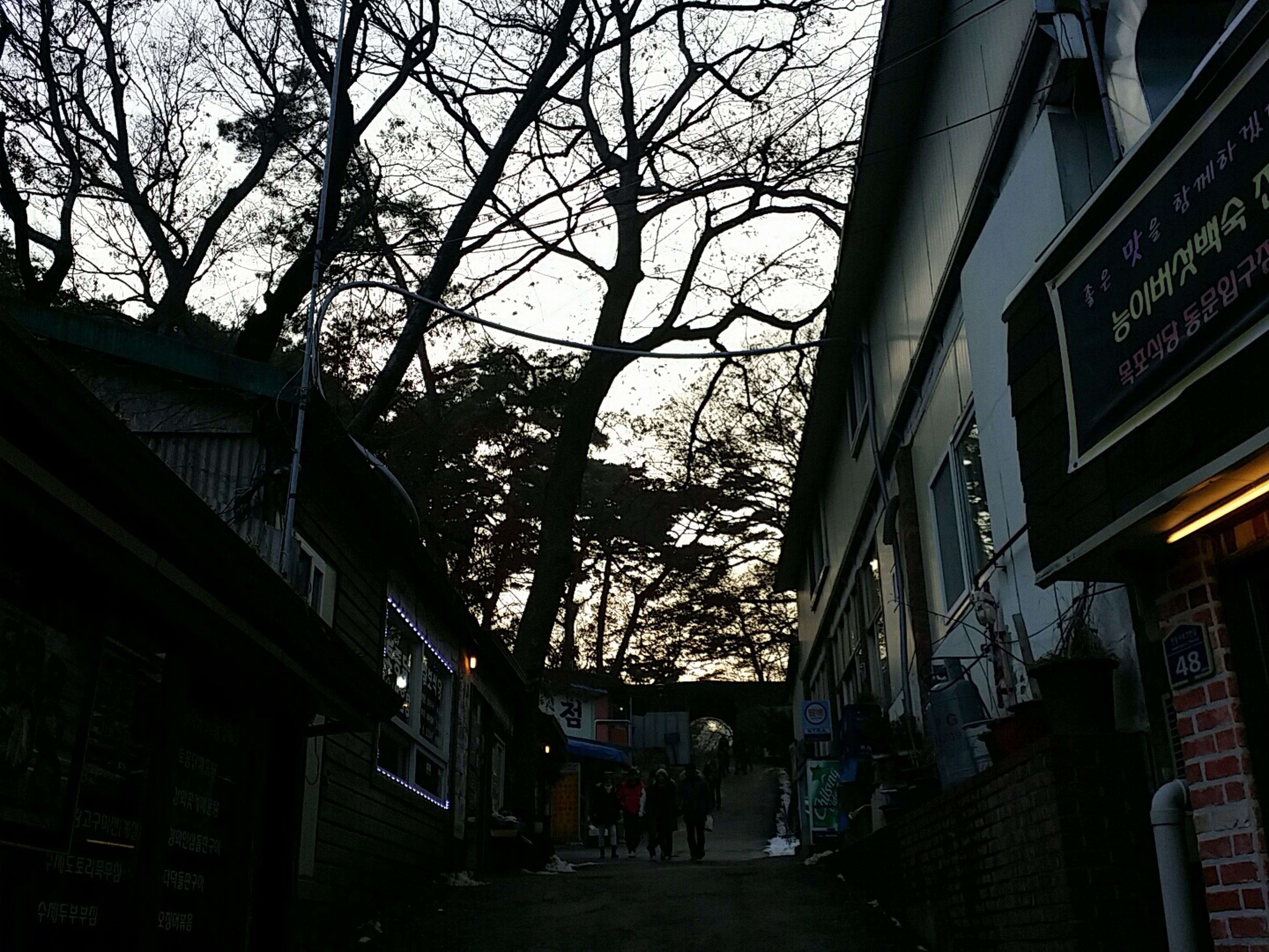 Ganghwado 강화도 전등사 Winter Narrow PhonePhotography