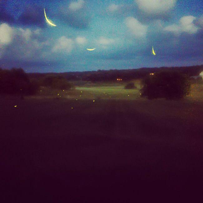 Fireflies Countryside Night Long Exposure Wisconsin