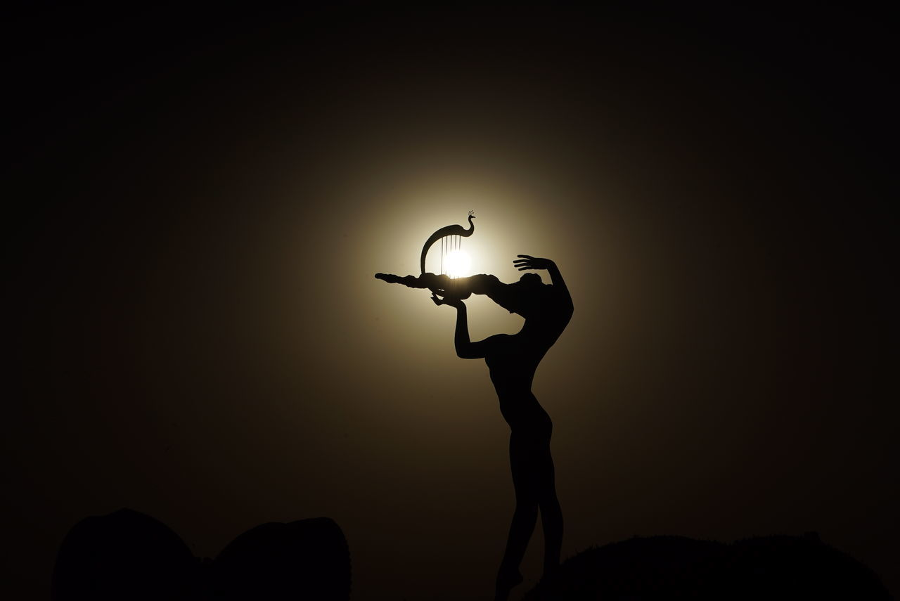 Silhouette Of Woman Playing Harp