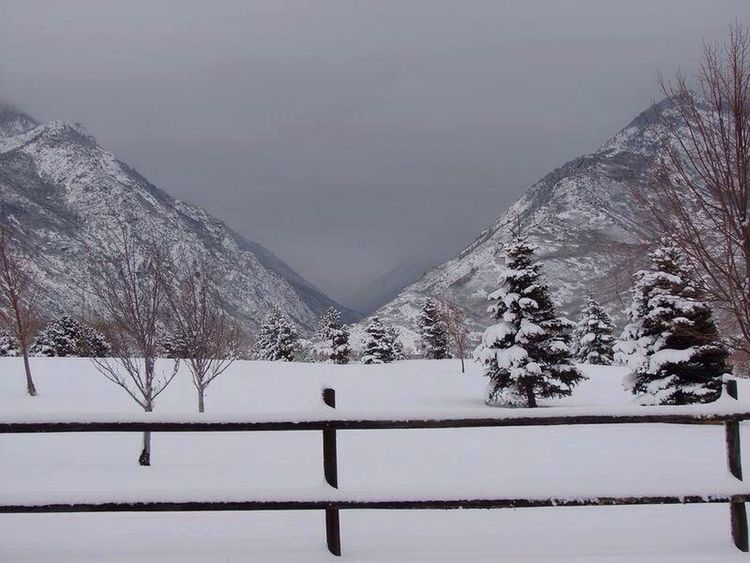 Clouds EyeEmBestPics EyeEm Nature Lover EyeEm Best Shots The Five Senses Utah Little Cottonwood Canyon Snow Storm Nature