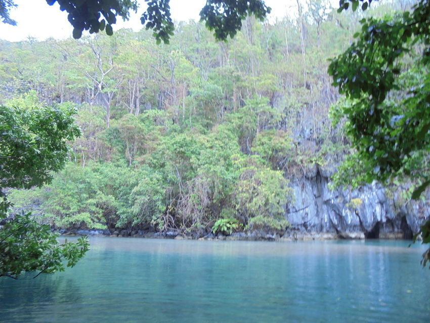 The famous Underground River of Puerto Princesa City, Palawan, Philippines Beauty In Nature Calm Day Nature Puerto Princesa City Palawan Philippines Tranquility Underground River Water