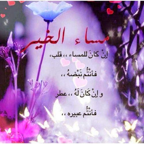 السلامعليكم جميعاً مسائكم سعادة تحياتي لكل من يتابعني تصبحون على خير وفي أمان الله
