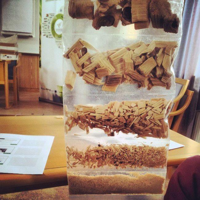 Preparing the wood for paper Moreresearch Örnsköldsvik Cp7_0