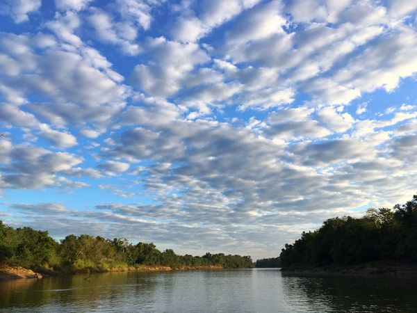 Daly River in the Northern Territory of Australia. Cloud - Sky Sky Water Tree Nature Beauty In Nature Outdoors Scenics Day Tranquility No People Daly River Northern Territory Australia Stilness Peaceful Clouds The Great Outdoors - 2017 EyeEm Awards