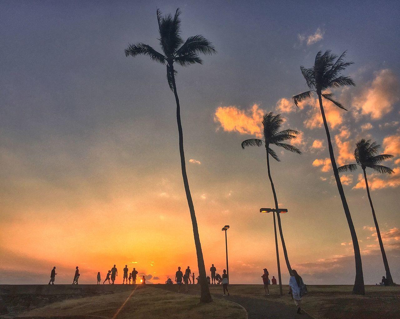 Beautiful stock photos of hawaii, Beauty In Nature, Cloud - Sky, Enjoyment, Honolulu
