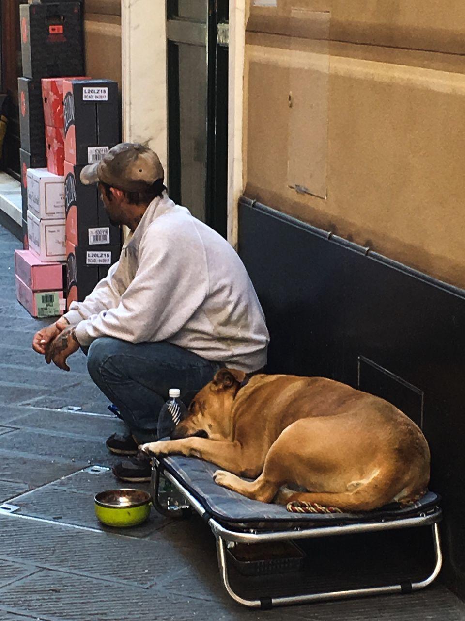 Man Sitting By Dog Lying On Bench