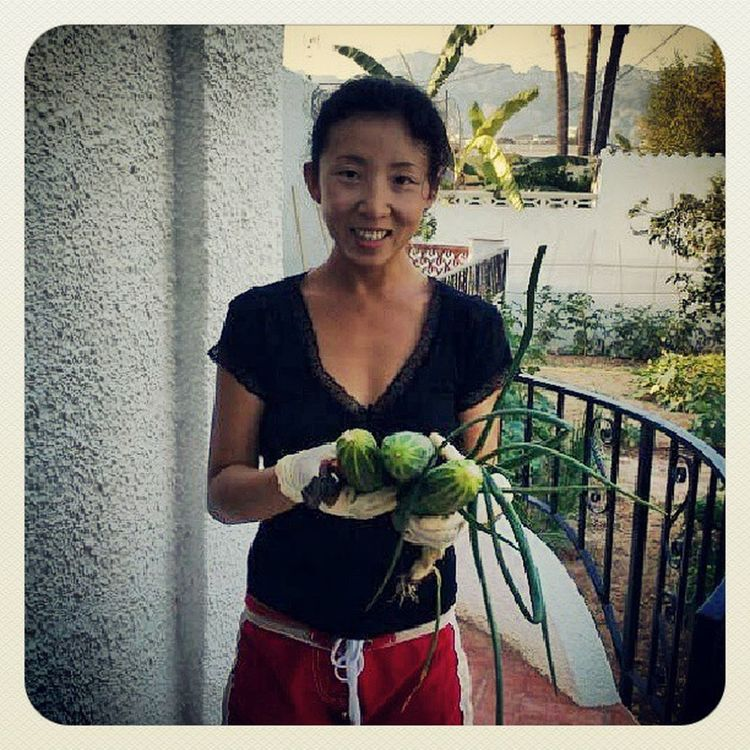 weeding and harvesting Happybunny Weeding Summer Harvest spain naturalfood organicgarden