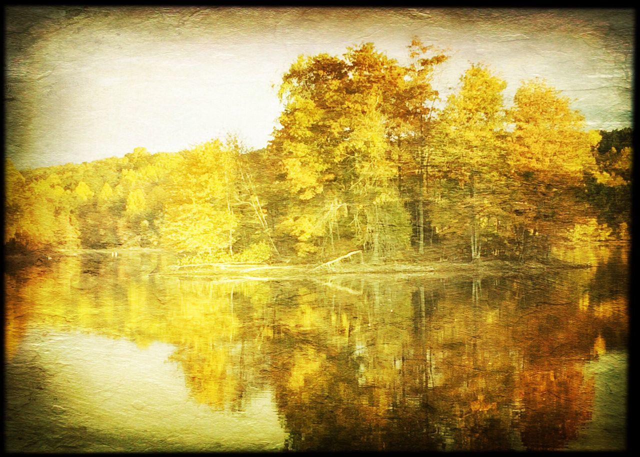 Reflection Water Scenics Outdoors Beauty In Nature Rural Rural Landscape Landscape Autumn Colors Autumn Yellow
