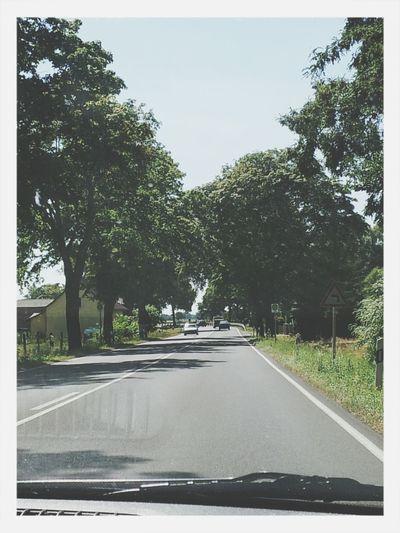 Landstrasse Auto street Boring Tree #yolo