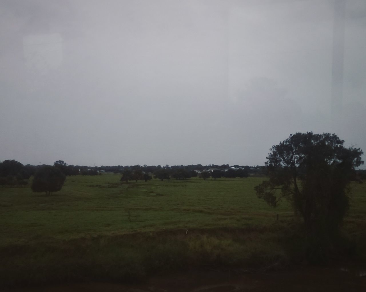 A beautiful landscape I always love travelling through on the train home. Nature Sky No People Beauty In Nature Landscape Scenics Outdoors Grass Agriculture Trees Cloudy Day Cloudy Overcast Gloomy Weather Fields And Sky Fields Tree Grey Sky Gray Sky Melancholic Landscapes Meadows And Fields Meadows