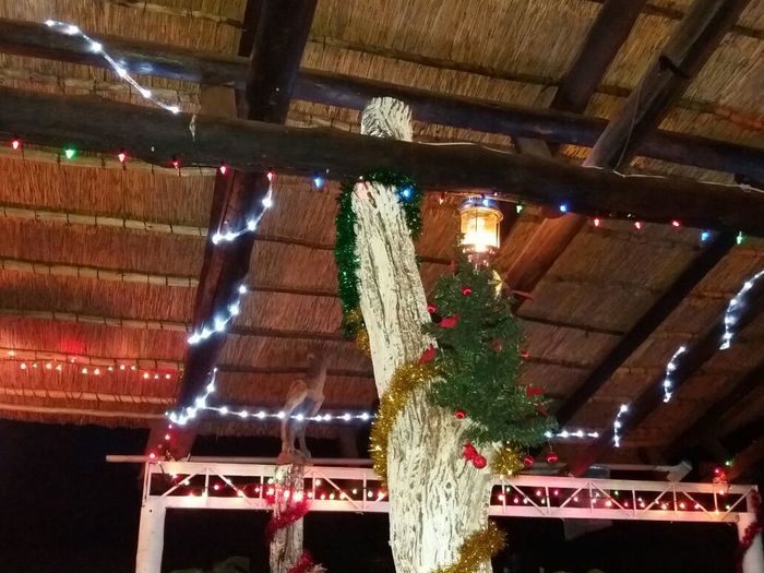 Christmas Lighting Equipment Christmas Decoration Built Structure My Thatch Lapa Celebration From My Point Of View South Africa