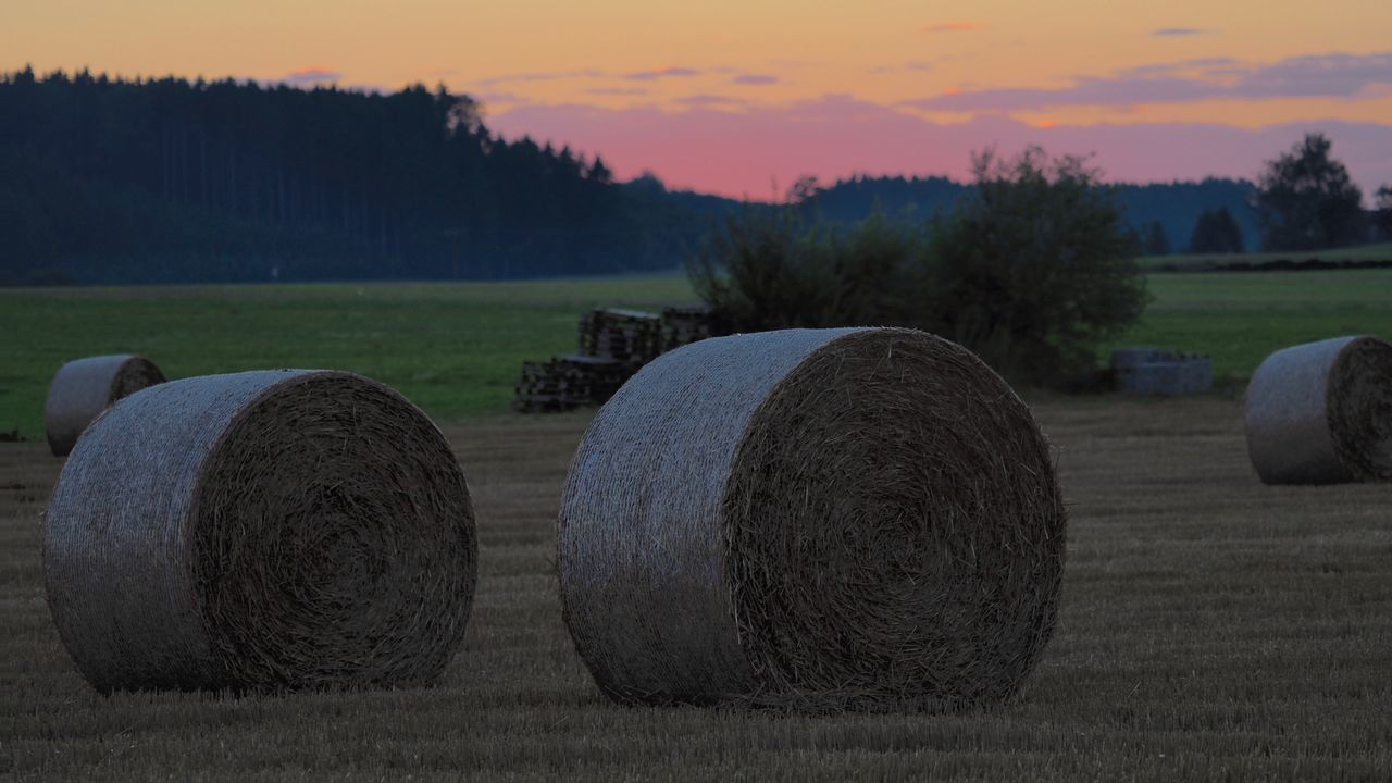 fields of gold Autumn Dawn Dusk Farm Farmer Field Fields Grass Maddo Sky Straw Sundown