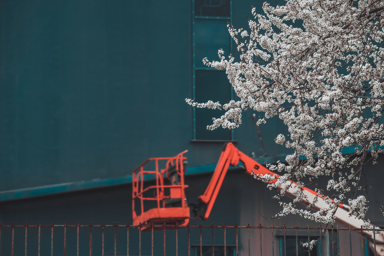 Blooming Architecture Façade Built Structure Machinery Machine Minimal No People Nature Spring Beauty In Nature Millennial Pink Blossom Urban