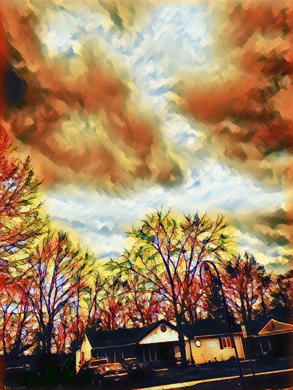 Dramatic sky view Camerafilters IPhoneography Grass Branch Forest Day Outdoors Sky And Clouds Homes
