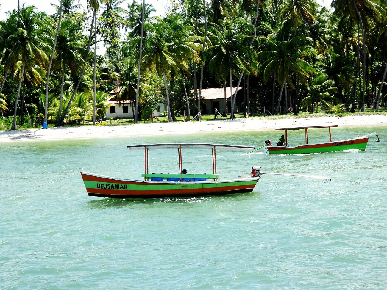 Praia Dos Carneiros Pernambuco Brasil Pescaria