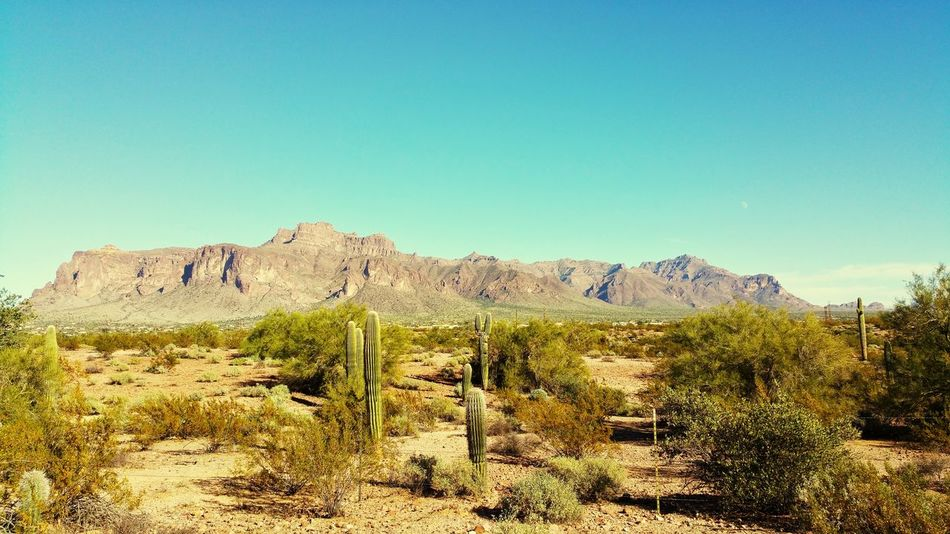 Superstition mountains Desert No People Outdoors Landscape Sky Mountain Nature Clear Sky Day Tree Apache Junction Arizona Phoenix Metro