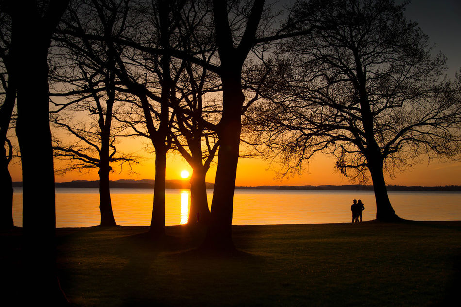 Bare Tree Beauty In Nature Branch Couple Horizon Over Water Landscape Men Nature Outdoors People Real People Scenics Sea Silhouette Sky Sun Sunset Togetherness Tranquil Scene Tranquility Tree Two People Water Women