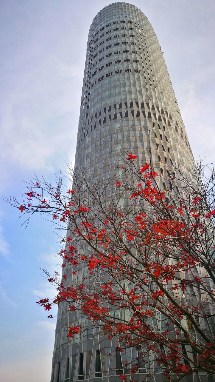 architecture, low angle view, built structure, skyscraper, building exterior, sky, tower, travel destinations, day, outdoors, modern, no people, city, tree