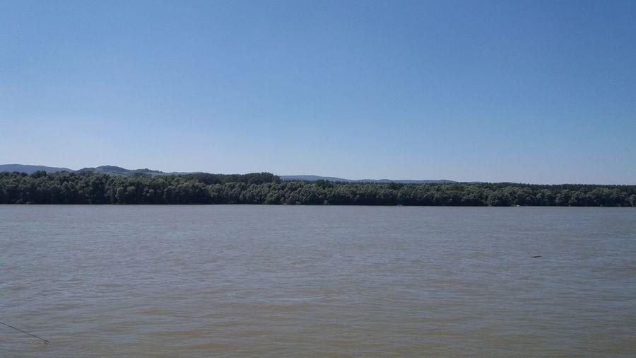 Danube River Looking For Her EyeEm Eyeemphotography EyeEm Gallery Eyeem Photography Love Lieblingsteil