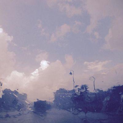 Rain made this Photography Photo