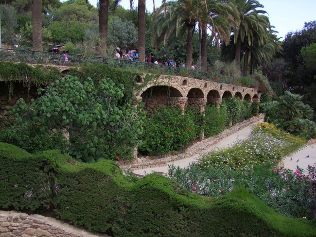 Walkway above Gardens, Parc Guell Arches Barcelona Beauty In Nature Composition Famous Place Flowers Full Frame Gardens Green Color Growth Incidental People Outdoor Photography Palm Tree Parc Guell Park Park - Man Made Space Plants Spaın Tourism Tourist Attraction  Tourist Destination Tree Walkway