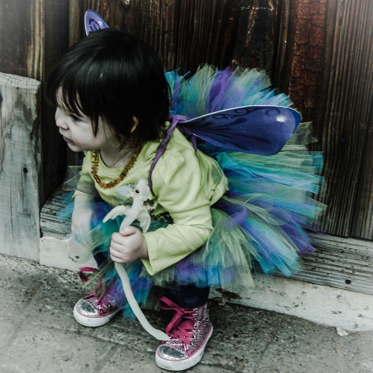 Fairy Princess Pastel Power
