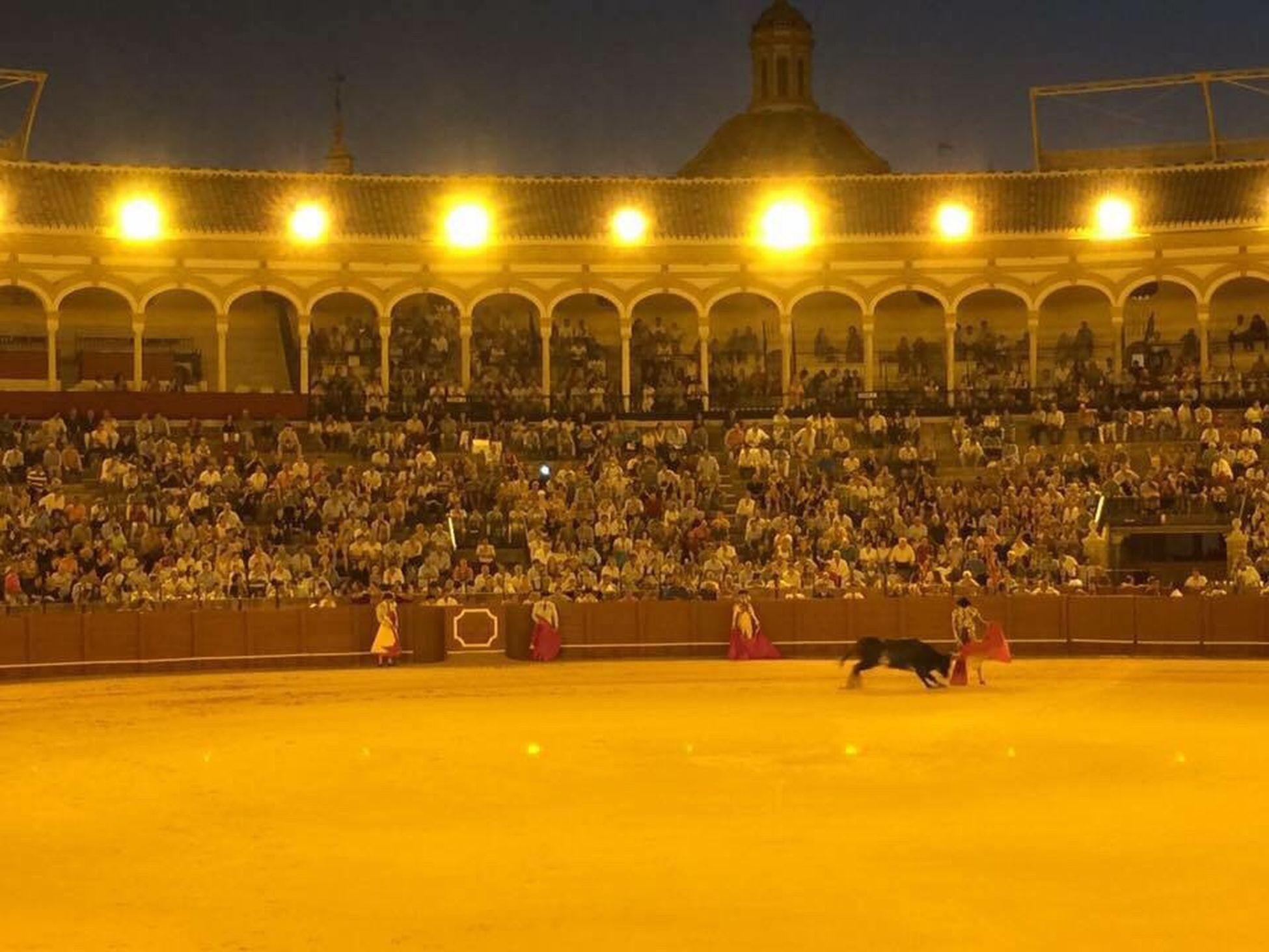 Bull Fighting In Seville Bullfighting