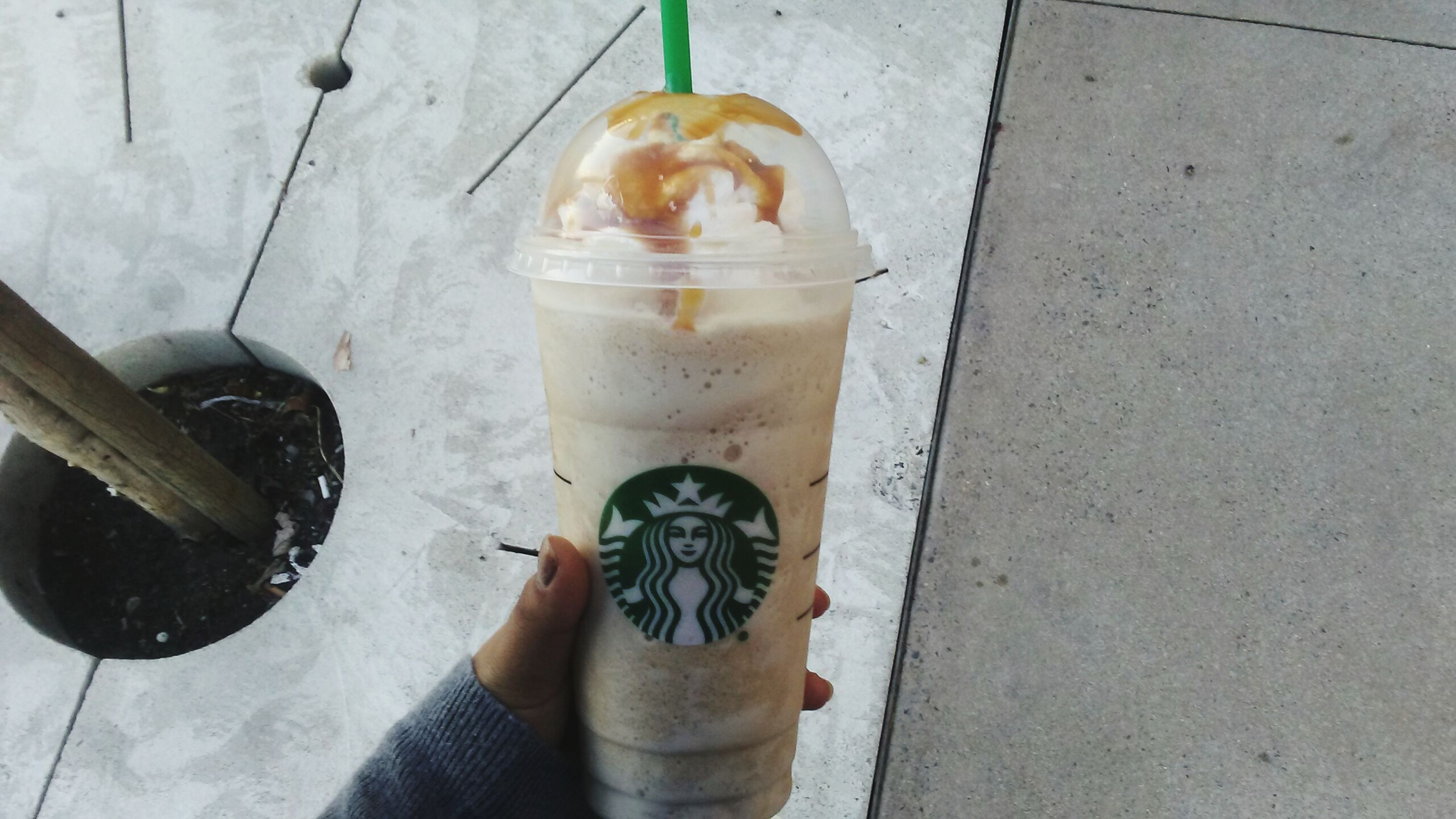 Frappuccino Caramel Frappe Coffee Time Coffee ☕ Ice Coffee Starbucks The Best Coffe Ever Street Street Photography Tree Taking Photos Hanging Out Check This Out Hello World Relaxing Enjoying Life Love ♥ First Eyeem Photo Photographer ❤ Photography Enjoying Life Villanueva'sphoto Taking Photos