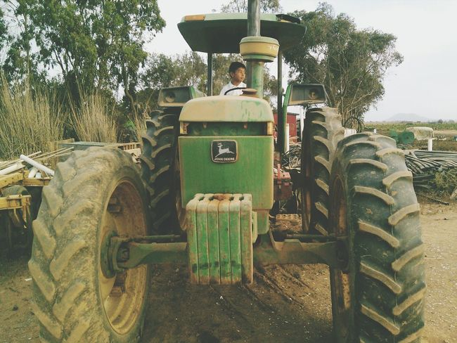 Green Color Tractor Day Nature Agriculture