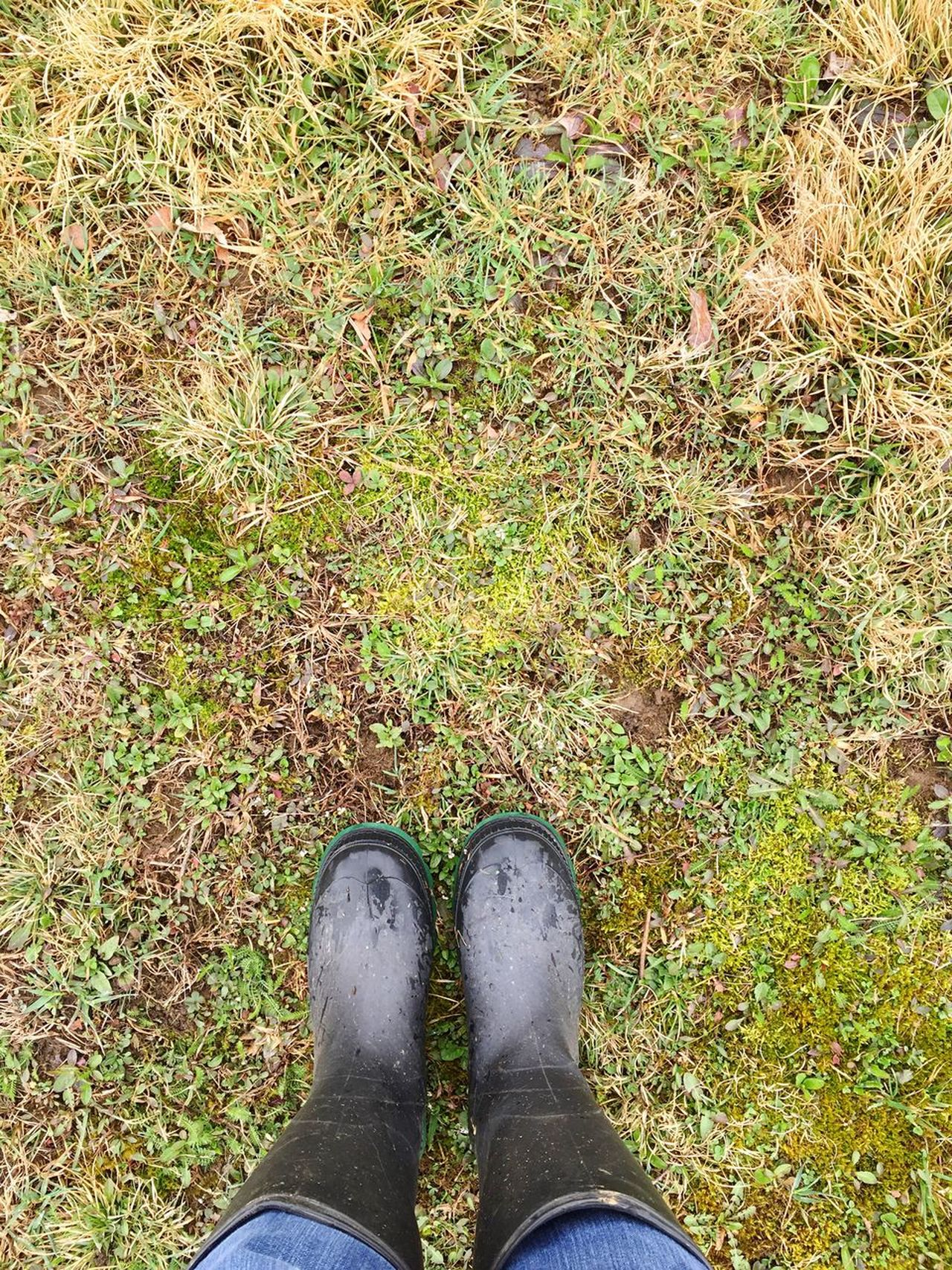 Low Section Standing Personal Perspective Shoe Outdoors Grass One Person Human Leg Day Human Body Part Rubber Boots Spring Close-up People