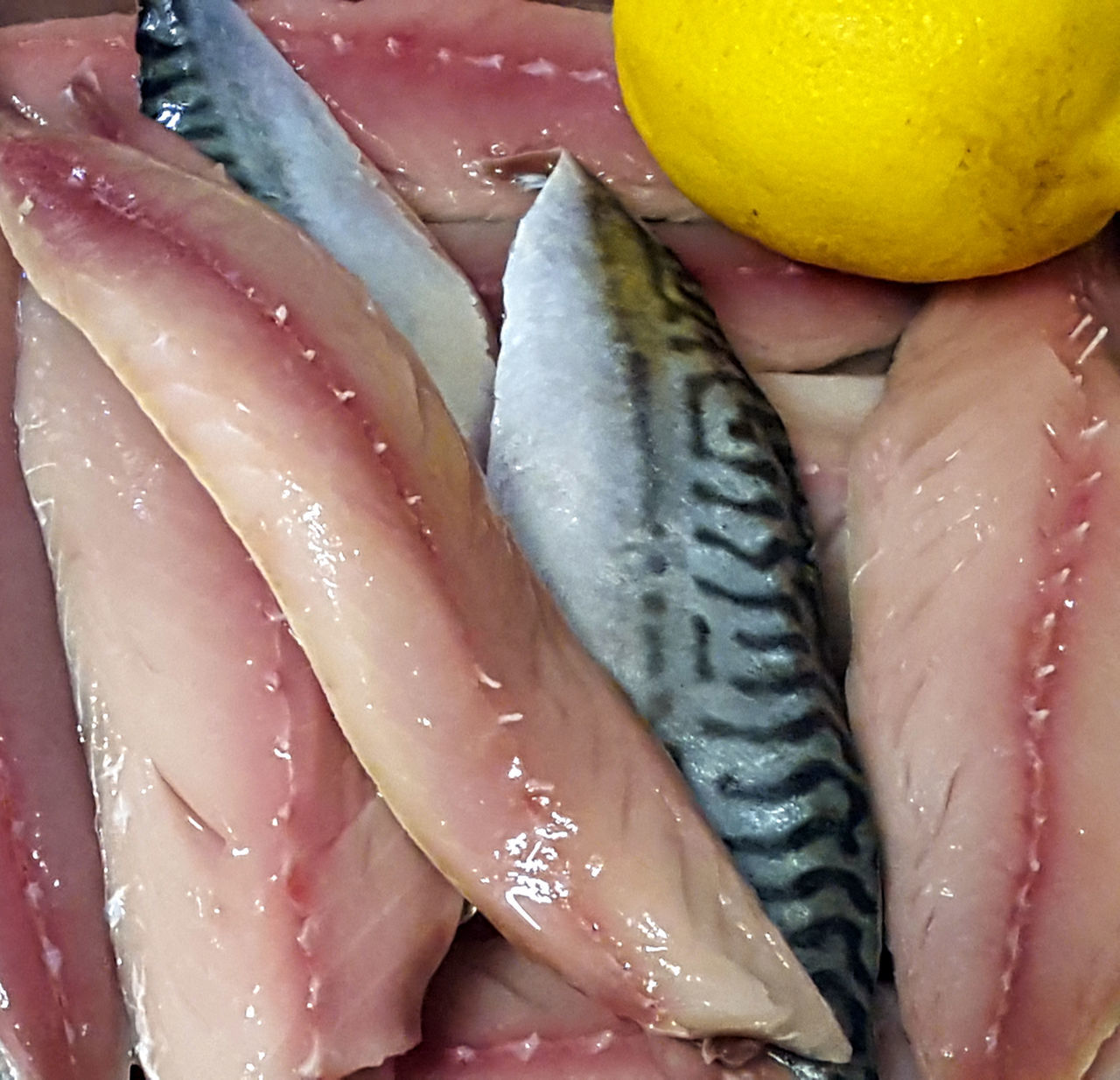 Mackerel Fish Fresh Filets