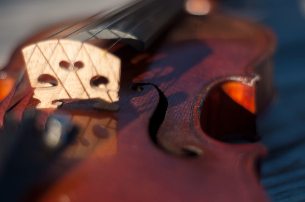 I started playing the violin in 6th grade as a part of a school orchestra program. I've had this particular instrument since 2002. The instrument is French made circa 1910-1920. I hope you enjoy these photos as much as I enjoy playing my beautiful violin! Aged Wood Arts Culture And Entertainment Bridge Close-up Depth Of Field Detail Durham NC F-hole Front Side Music Musical Instrument Natural Beauty Outdoors Reflection Sound Hole Sunlight Violin
