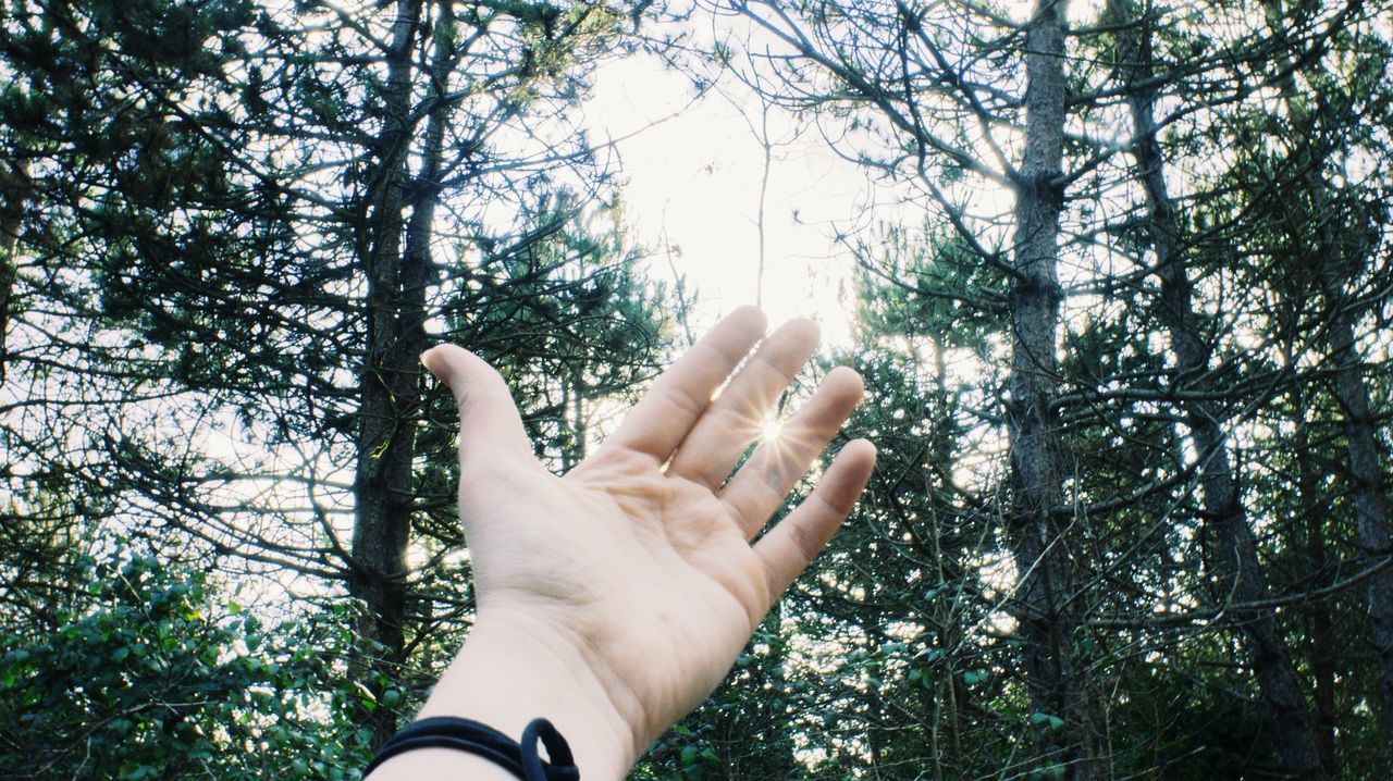 Catch the sun in your hand. France. Nature EyeEm Nature Lover VSCO Eyemnaturelover Nature On Your Doorstep Connected With Nature Protecting Where We PlayHand Vscocam Capturing Freedom Learn & Shoot: Simplicity