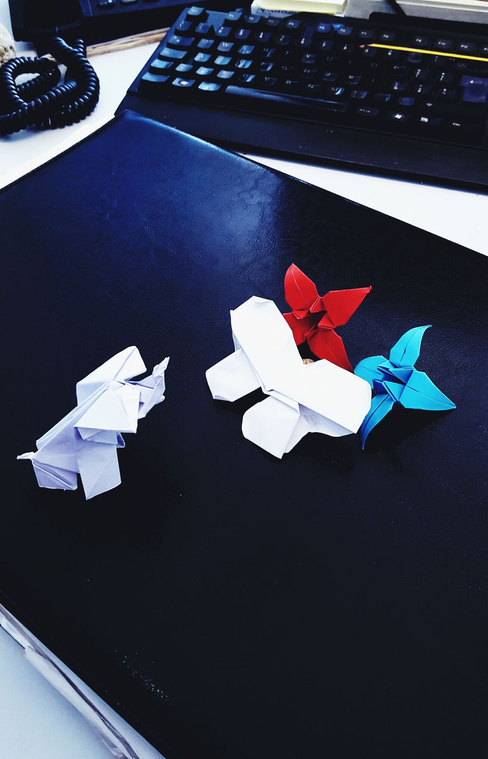 Paper View please...take me away with you.... Paper Paper Art Paperwork Elephant Elephants Butterfly Butterflies Origami Origamiart Origamitime