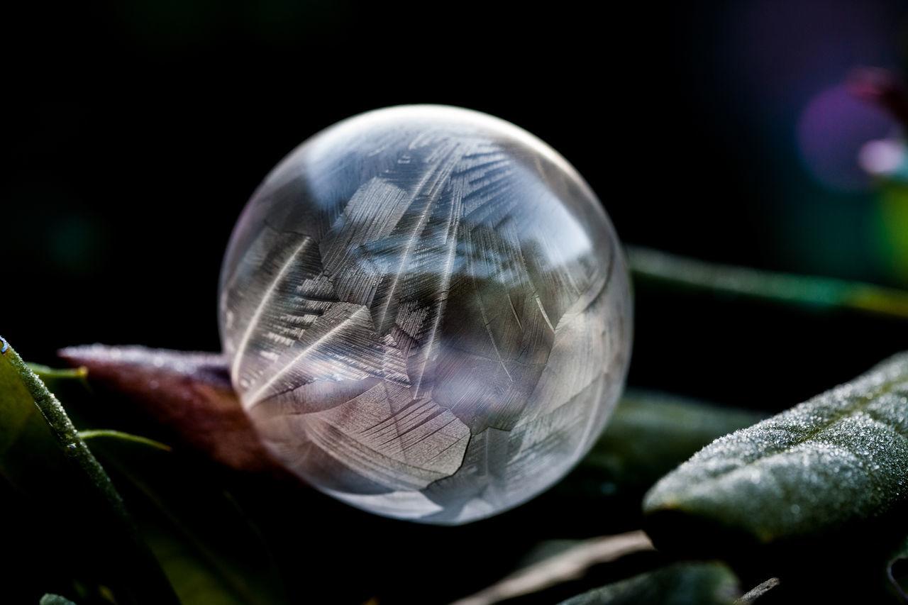 Frozen Bubbles - Bubble Bubbles Eis Eisblumen Eiskristalle Frozen Frozen Flower Gefroren Must Seifenblase Winter