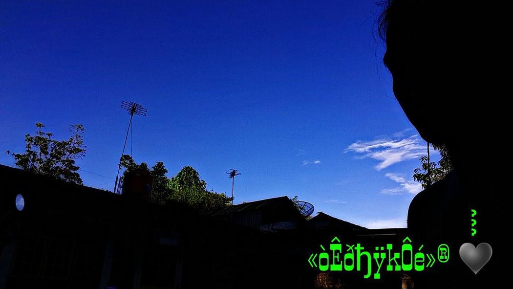 That's Me Taking Photos Sillhoute Photo♡