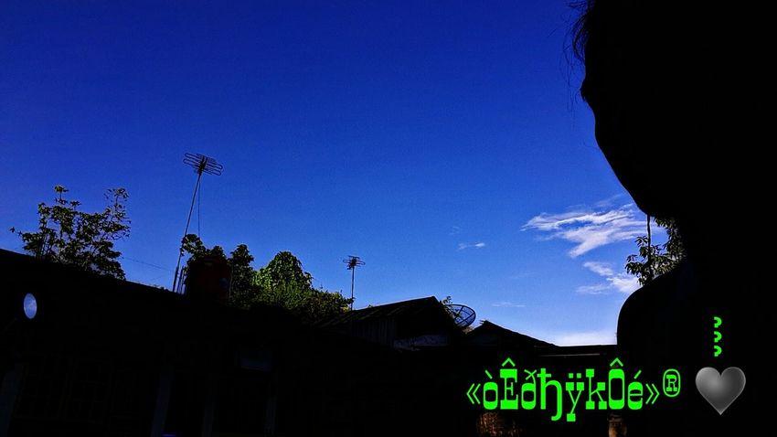 Hello World It's Me Amazing Photo♡ ?