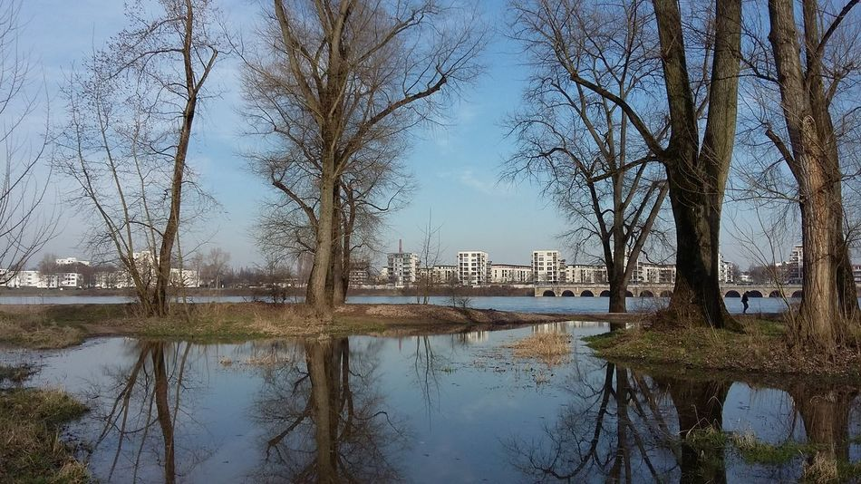No People Trees Weather Is Perfect River Urban Landscape Outdoors Beauty In Nature High Tide Symmetry Water Mirror Effect Reflection Pic Of The Day Shades Of Winter