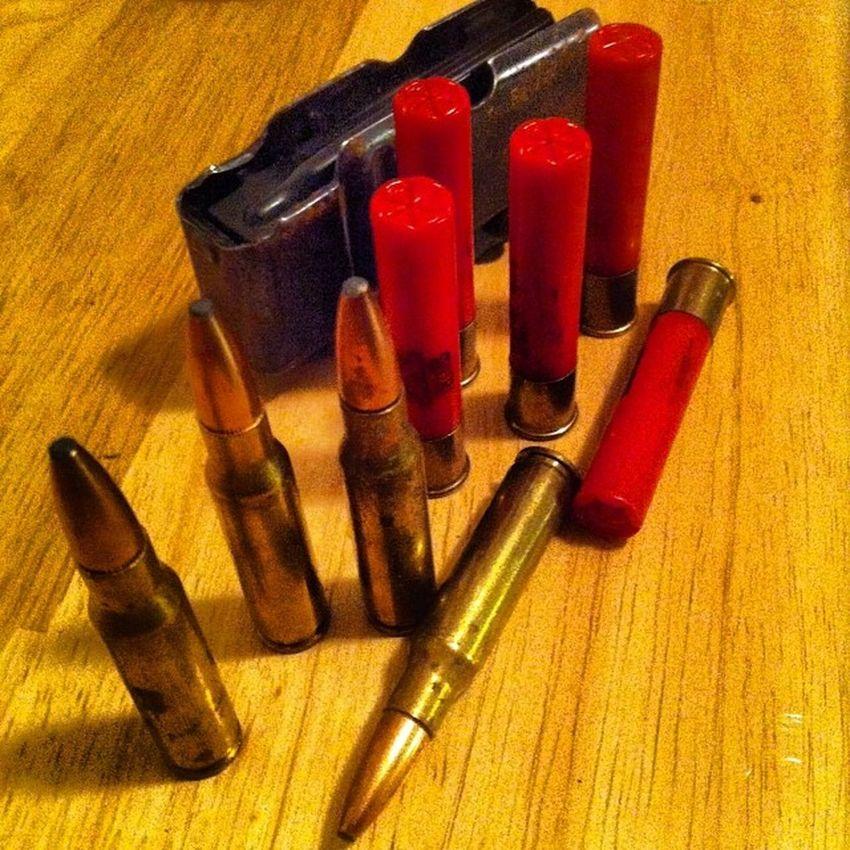 Do you hunt? Shotgun Shell 308 Shell rifle gun clip hunting