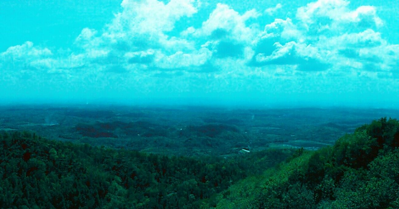 West Progo Kalibiru Yogyakarta First Eyeem Photo