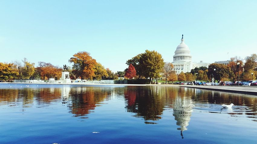 Water Architecture Reflection Sky US Capitol Building Fall Beauty Autmn Colors Fall Colors