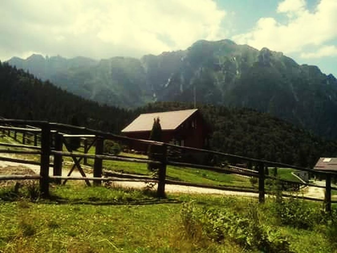 Cabin Traveling Hello World Check This Out Wonderful View Eyem Nature Lovers  Romania ! Feeling Happy Amazing Nature Freedom Mountain