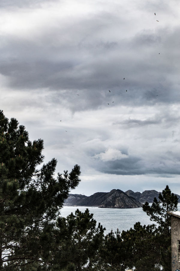 View of the cies islands Atlantic Cies Cies Islands Clouds Clouds And Sky Cloudscape Islands Monteferro Monteferro Ocean Ocean View Trees