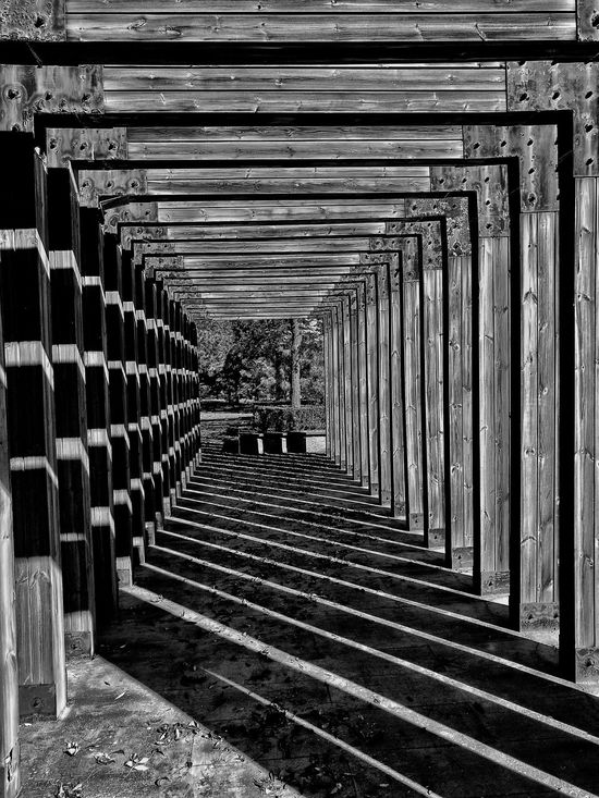Monochrome Photography abstraction wood Chaoyang Park Streetphotography Streetphotography_bw This Is Beijing EyeEm Gallery China Photos My Beijing 2016 Street Photos😄📷🏫⛪🚒🚐🚲⚠ BEIJING北京CHINA中国BEAUTY China In My Eyes Eye4photography  Street Photography Architecture Light And Shadow Lightandshadow Streetphoto_bw Pattern Wood - Material Wooden Structure